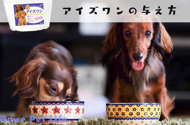 アイズワンを美味しく食べている犬