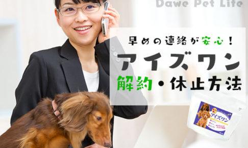 アイズワンの解約電話をしている飼い主さんと犬