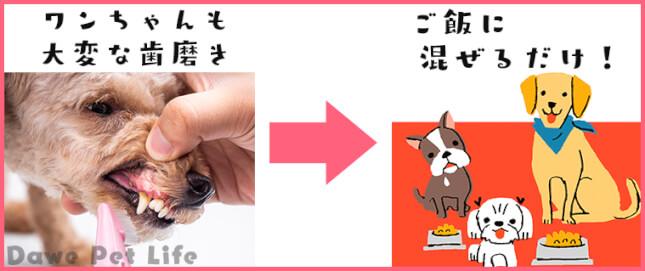 犬の歯磨きからラブリービーに変更した場合の例